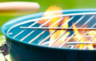 Avoiding Pest Problems at Your Outdoor Barbecues