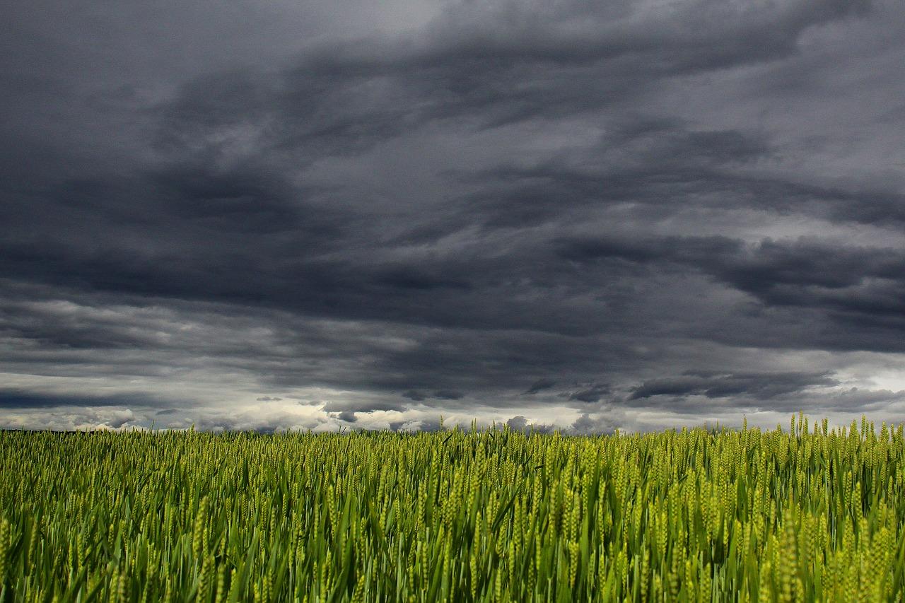 Storm Clouds, Rain